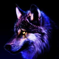 FOX_PR3D4T0R